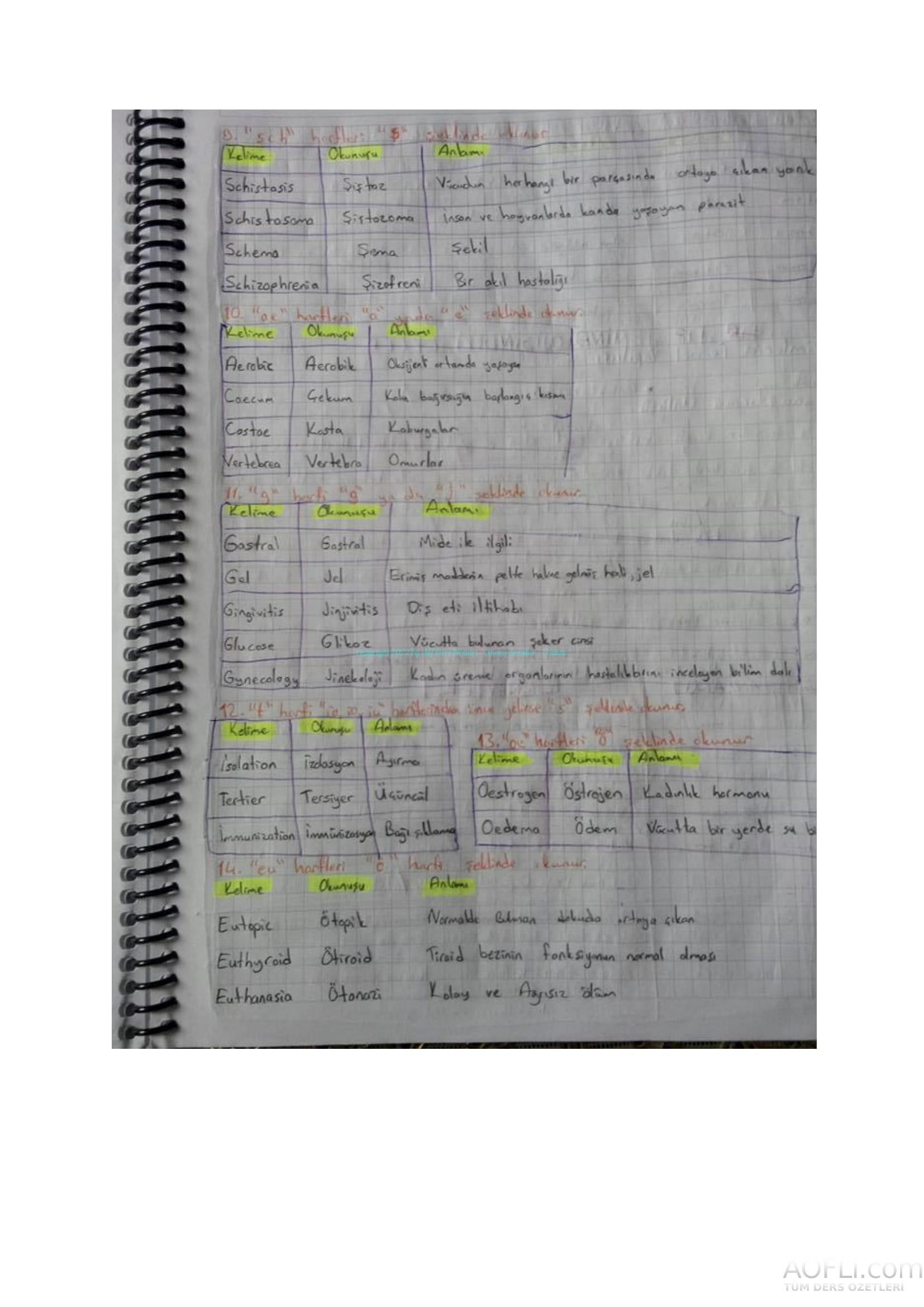 Tıp Terimleri El Notu-05.jpg