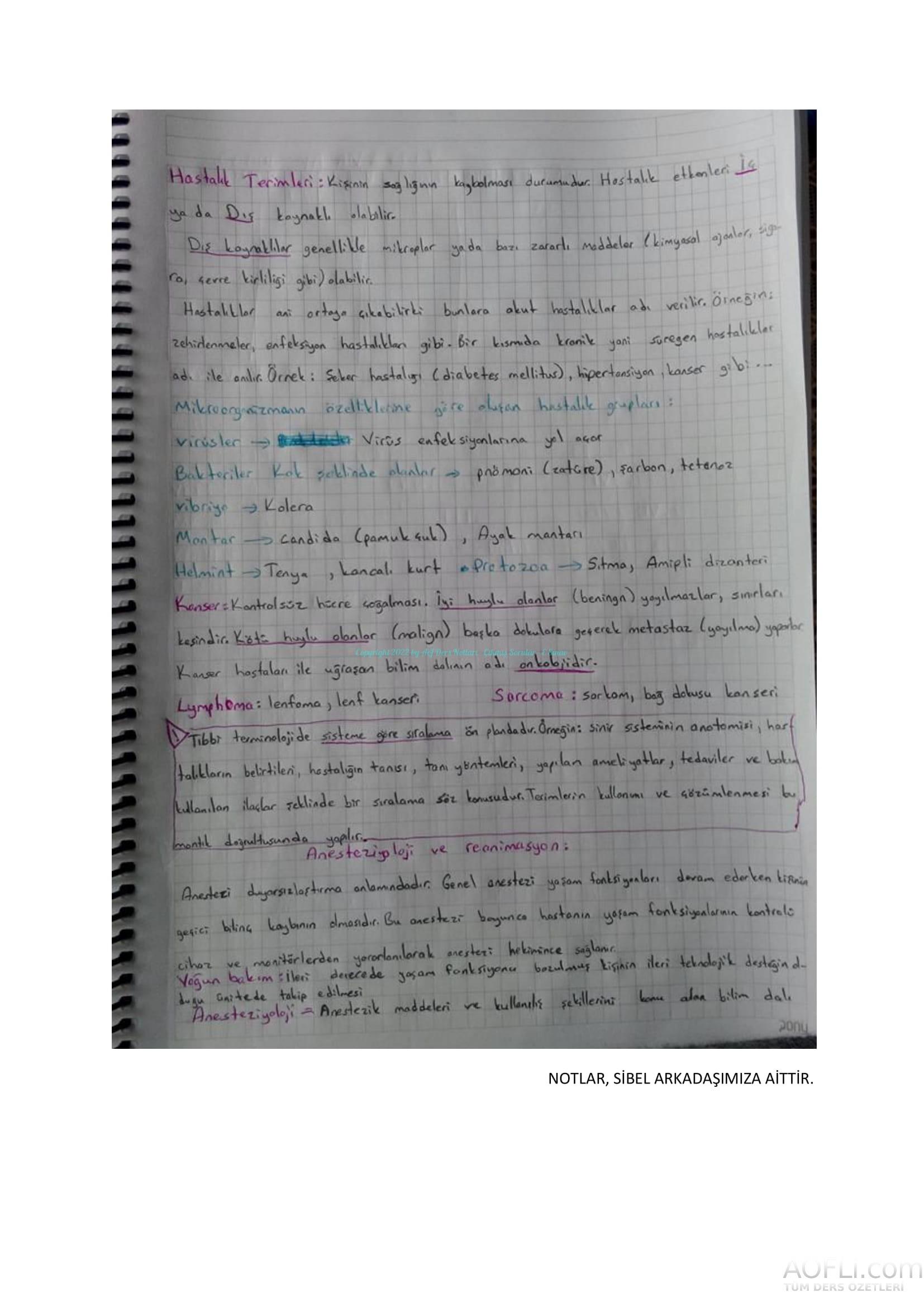 Tıp Terimleri El Notu-13.jpg